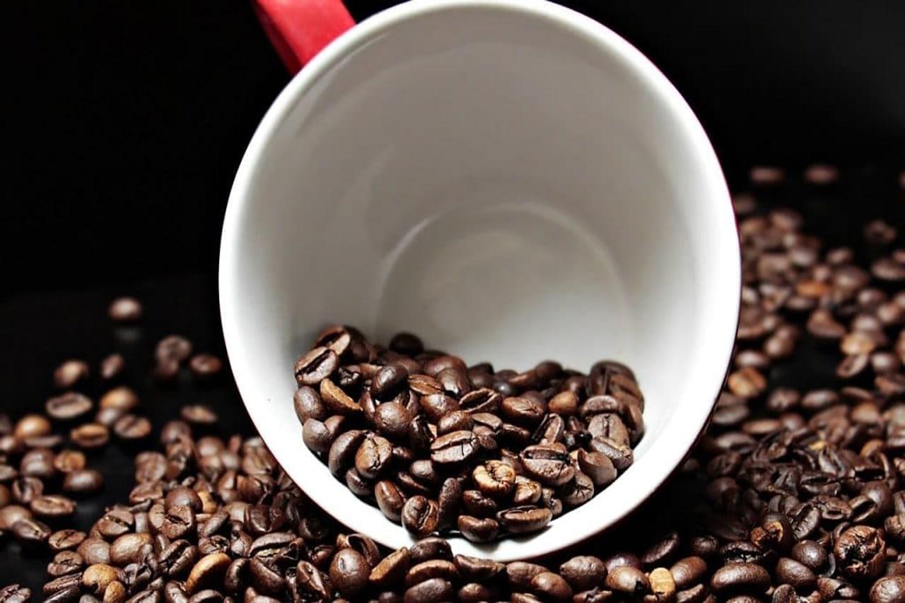 cafe excelsa